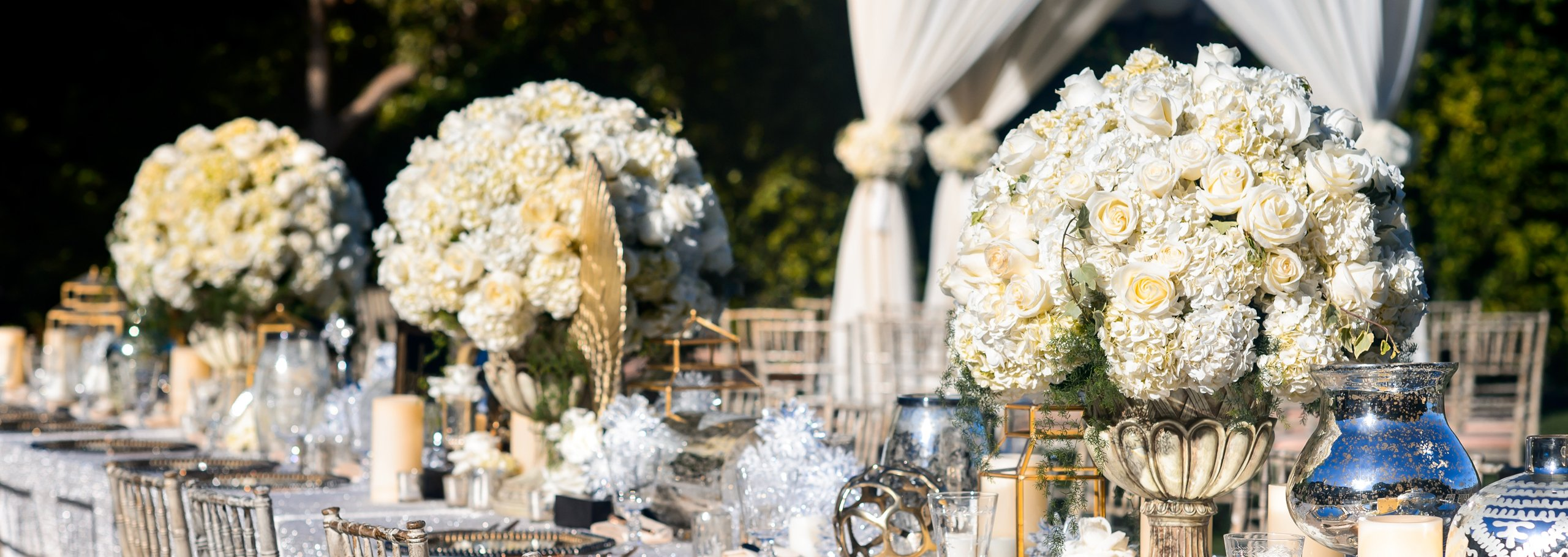 Diann Valentine Weddings and Interior Design